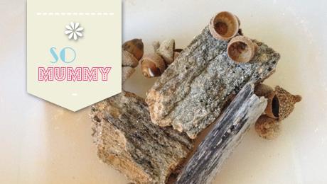 Somummy-blog-maman-balade-foret-bac-sensoriel-matieres